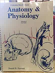 laboratory manual for anatomy and physiology 4th edition free download