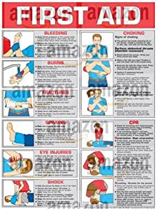 first aid manual book free download