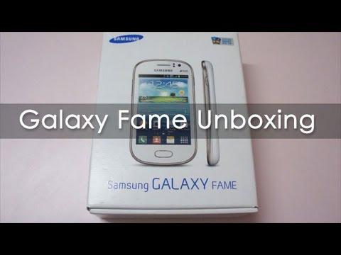 samsung galaxy fame gt s6810p user manual pdf