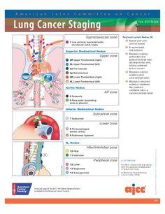 ajcc manual 8th edition pdf